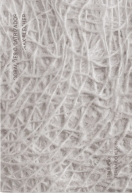 Corações Cicatrizados - Max Blecher